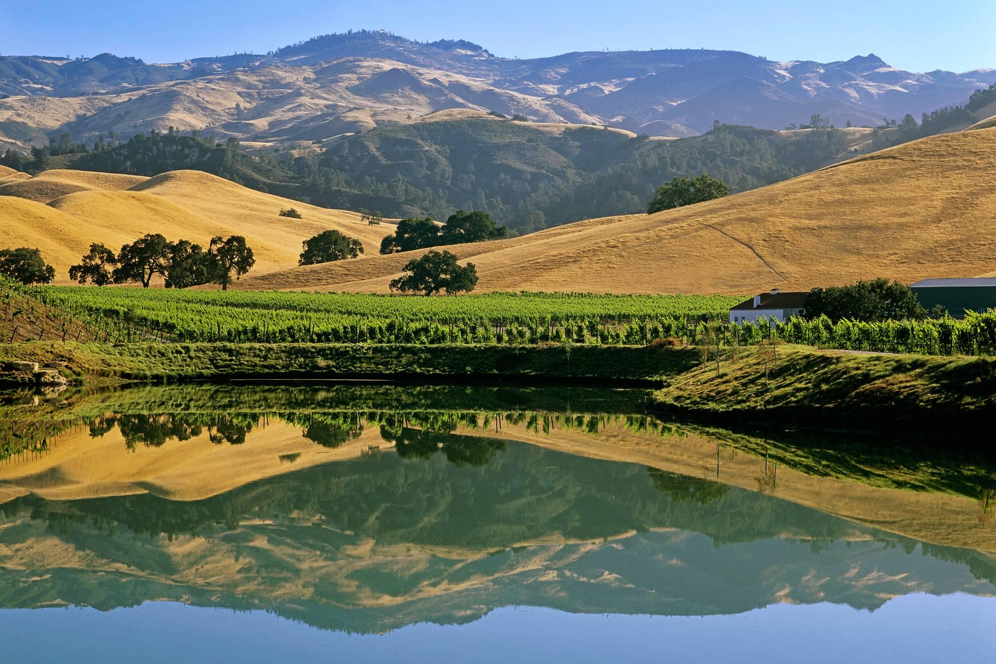 加州 山谷间的杯酒人生