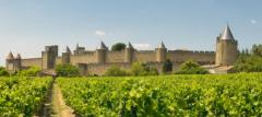 你去过朗格多克葡萄酒产区吗?