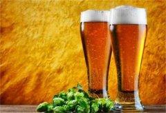 啤酒的历史和由来你知道吗?