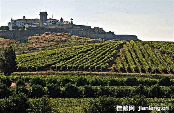 葡萄牙阿连特茹产区:欧洲大陆最美丽富饶的土地之一