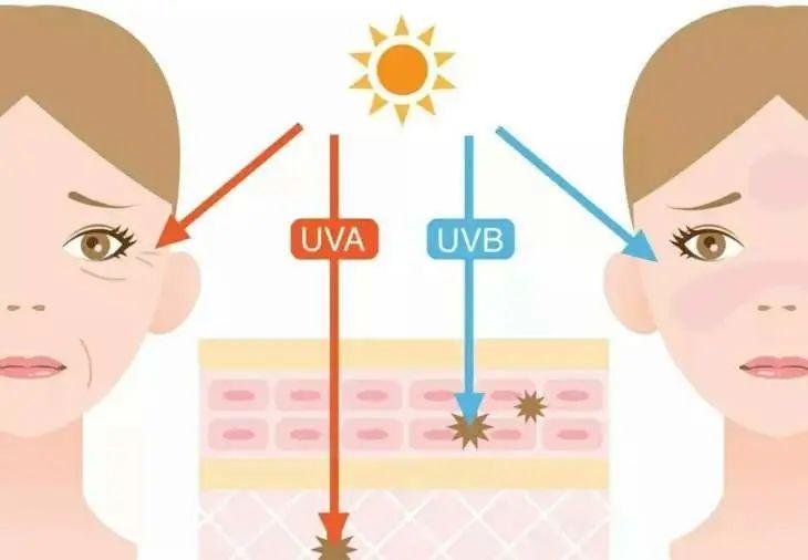 太阳越来越毒,你却还没挑好防晒霜?